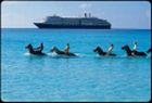 Cruise Shore Excursions - Shore Excursions - BestCruiseBuy.com